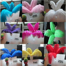 10PCS / lot natural color of ostrich feathers 15-20CM6-8 inch 2014 new wind turbine manufacturing Christmas Halloween Party
