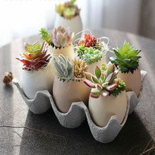 Creative Egg Shape Vase 6 Pcs Eggs And 1 Pcs Egg Equipment For Succulent Plants Christmas Gifts 1set(China)