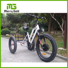 Cheap Price and High Quality 48V 500W Electric Tricycle Merry Gold Fat Tyre Tricycle With 48V 500W Front Motor