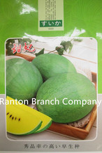 Original Packing ,100 seeds / pack, Japan Green Color and Yellow Flesh Watermelon Seeds Very Sweet Watermelon