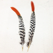 50Pcs Lady Amherst Pheasant - Red Arrow feathers tail 15-20cm / 6-8'' for jewelry clothing craft making bulk sale