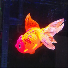 1PCS Light in the darkness of the artificial TankJelly fish aquarium pet goldfish ornament adornment(China)