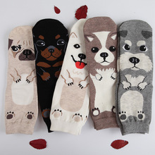 Candy color lovely dogs Cute cartoon sox Autumn Summer South Korean women's Fashion Cotton tube Socks meias soks(China)
