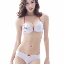 Buy MINGMO 2018 Sexy Japanese Bra Set Cotton Lingerie Sexy Front Closure Bra Push Bra Panty Sets Underwear Women Panties Set