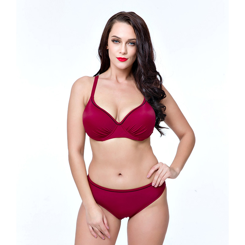 New Sexy Women Bikini Sets Plus size Swimsuit Push Up Bathing Suits Two Pieces Swimwear Fat Female Biquini Tankini Monokini <br>