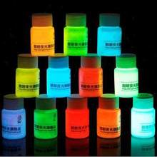 2015 20g 12 color DIY Graffiti Paint Luminous Acrylic Glow in the Dark Pigment Party Walls
