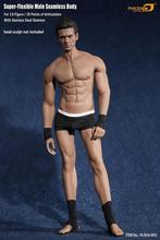 In Stock Newest Phicen 1/6 Scale PL2016-M33 Male Super Flexible Seamless Body With Stainless Steel Skeleton Gym Muscular Figure