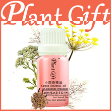 Essential Oils Kingdom 100% Pure Plant Cumin Oil 10ml Face Firming Slimming Cream Face Care Skin Removing Double Chin