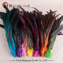 Factory wholesale 50pcs/lot cheap rooster tail feather colorful 30-35cm(12-14inch) for decorate(China)