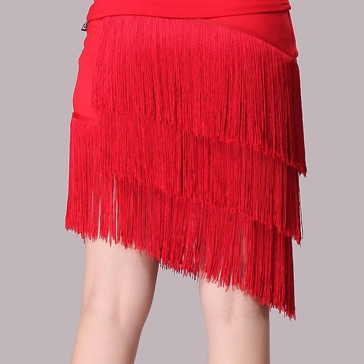 Latin Tap Dance Dress (1)