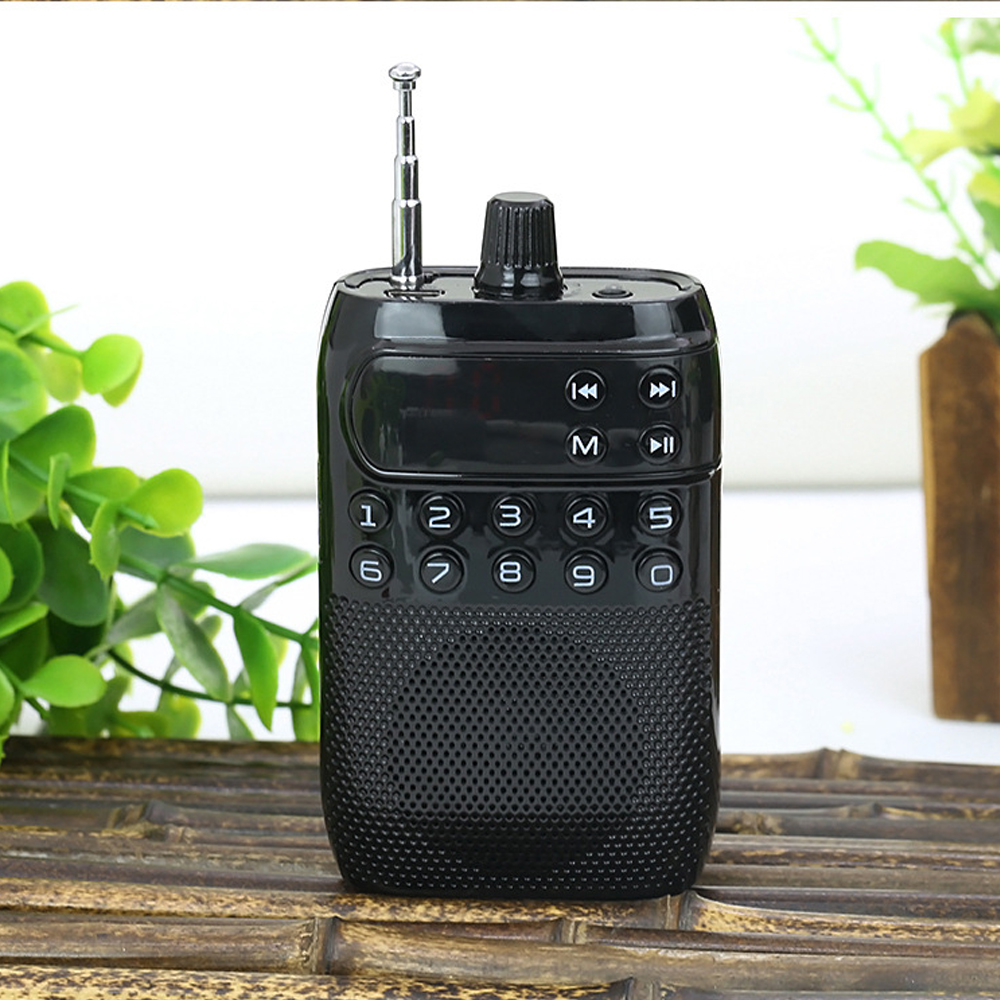 E2948-mini FM radio-black
