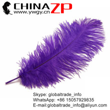 Leading Supplier CHINAZP Factory 50pcs/lot 35-40cm(14-16inch) Fantastic Decorative Purple Ostrich Drab Feathers