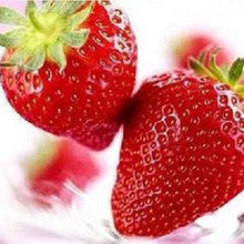 On sale! 300pcs 9kinds of strawberry seeds,white,yellow,blue,black,red,green,strawberries flower seed Fruit garden plants.bonsai(China)