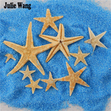 Julie Wang 20Pcs/lot Natural Starfish Sea Star Shells Ornament Nautical Decor Beach Wedding Ceremony Crafts Decoration