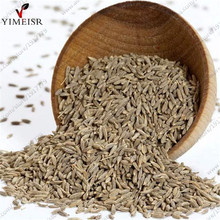 Cumin seeds(Cuminum cyminum) - Rare Non-GMO Culinary Herb plant spices Seeds for Home garden vegetables 200seeds/bag