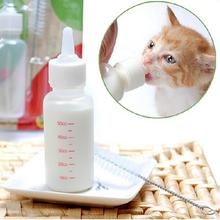 kitten Bottle 50ml Pet Nursing Feeding Bottle with Cleaning Brush Replacement Nipple for Dogs Cats(China)