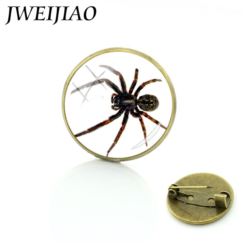 JWEIJIAO Spider Brooch Pin Badge Vintage Jewelry Men Women Wholesale Scarf Clips Hijab Pins Up Insects Brooches E889(China)