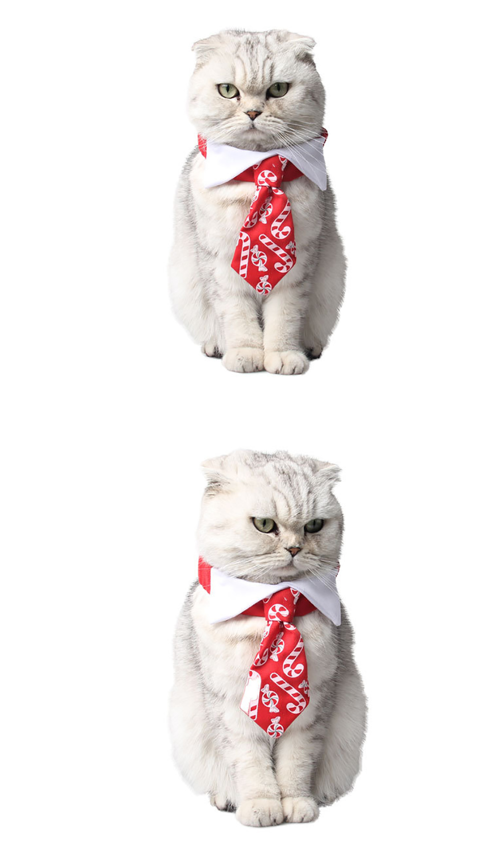 Divine Shield Christmas Cat Tie Candy Print Red Bow Tie For Dogs Pet ...