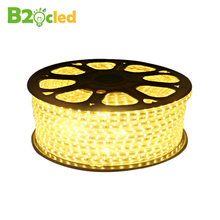 High quality waterproof LED strip light 220V SMD5050 strip lamp for Home Furnishing lighting Indoor ceiling lighting and power