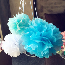 Wedding Decoration 5pc 13 20 25cm Pom Pom Tissue Paper Pompom Flower Graduation Birthday Party Decorations Adult Decora Mariage(China)
