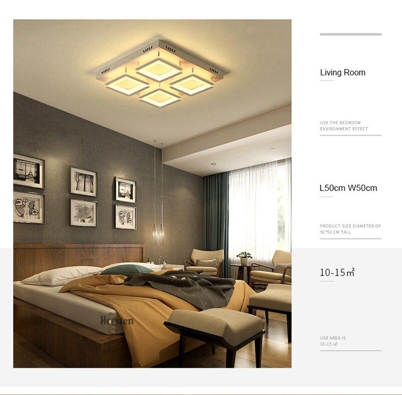 Modern Led Ceiling Light For Living Room Bedroom Kitchen Dimmer Simple LED Ceiling Lamp Home Lighting (6)
