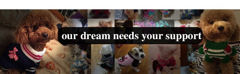 our dream needs your support