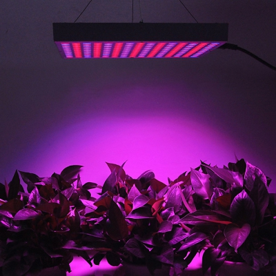 14W AC100-260V Red+Blue LED Plant Grow Light for Indoor Gardens, Greenhouses, Horticulture, Plants<br>