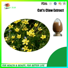 Pure Natural Cats Claw Extract from GMP Manufacturer 300g/lot