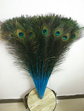 "Free shipping 50 PCS Blue natural peacock feather eye 30-32""/75-80 cm DIY jewelry decoration / Christmas / Halloween Decoration"