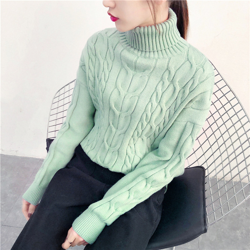 Thick Turtleneck Warm Women Sweater Casual Loose Twine Knitted Pullovers Sweater Solid Color Autumn Winter Female Jumper