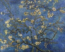 Almond Blossoms reproduction oil painting famous artist Van Gogh oil painting pictures for christmas gifts No frame