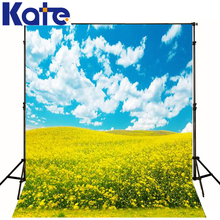 Wedding Background Photography Galinha Pintadinha Yellow Flowers Blue Sky And White Clouds  Cm-5716