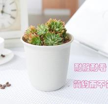 Free shipping,Type B chunky white color,Vientiane Basin.scrub pots.plastic flowerpot Rose.round pot,garden supplies.wholesale(China)