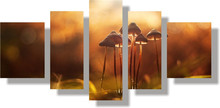 5 Panels Unframed Canvas Photo Prints Mushroom Wall Art Picture Canvas Paintings Wall Decorations Giclee Paintings Home Decor