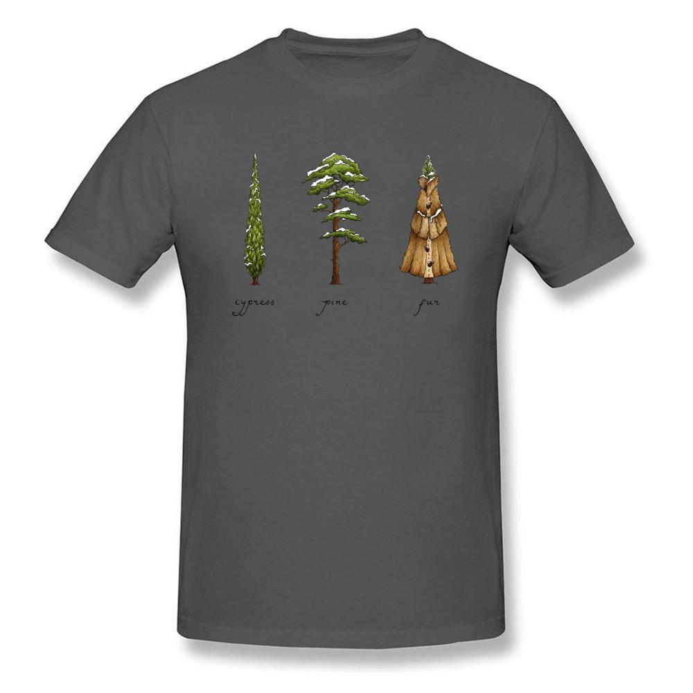 Know Your Coniferous Trees_carbon