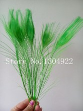 Hot sale!! 200Pcs/Lot Apple Green Peacock Tail Feathers 10-12 Inch 25-30cm Peacock Feathers free shipping(China)