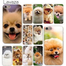 Lavaza Pomeranian dog dogs Hard Phone Cover Case for Apple iPhone 10 X 8 7 6 6s Plus 5 5S SE 5C 4 4S Coque Shell(China)