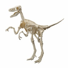 1 pcs 4D Novelty Assorted Dinosaur Skeleton Model Assenbly Toys World Play Game Educational DIY Jigsaw Toy