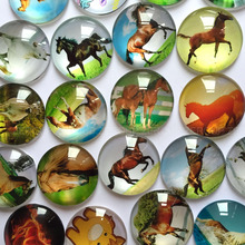 ZEROUP round glass cabochon horse pictures mixed pattern fit cameo base setting for jewelry flatback 20pcs/lot TP-008-R(China)