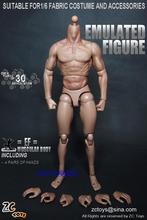 "ZC TOYS New Styles 1/6 Scale Military Male Soldier Model Nude Muscular Body Similar to TTM19 Wolverine 12"" Action Figure Toys"