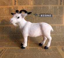 simulation small white goat 19x9x17cm toy model polyethylene&furs goat model home decoration props ,model gift d074(China)