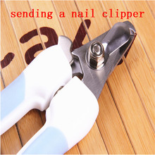 Upscale pet nail clippers hot dog cat stainless steel nail clippers wholesale high quality dog nail clippers sending nail file(China)