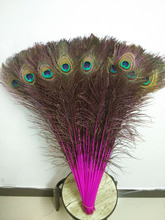 Free shipping 50 pc 28-32inches / 70-80cm high quality red rose natural peacock feathers, diy wedding decorations, etc.