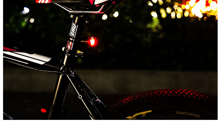Bike Back Light_20