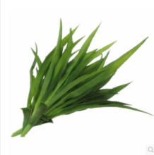 Gladiolus Leaf Green grass Long Artificial Grass Plants Length Silk Leaves Home Decorations