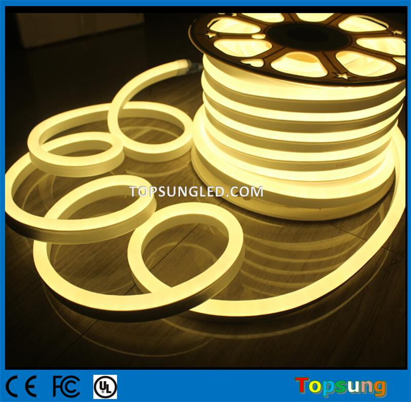 Warm White LED Neon Light Topsung (14)_gezshou