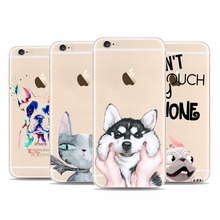 Crazy Cat dog Boston Terrier dog clear hard phone Cases cover for Apple iPhone 8 6s Plus 7s 7Plus SE 5 5s 6(China)