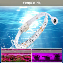 Waterproof IP65 120W High Power Plant lamp AC110-24V Full Spectrum LED Greenhouse Plants Hydroponics Flower Grow Light strip