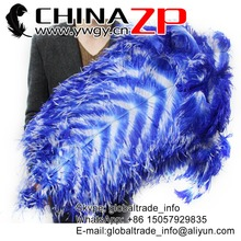"CHINAZP Factory Size 70-75cm(28""-30"") 50pcs/lot Selected Prime Quality Dyed Royal and White Ostrich Drab Feathers"