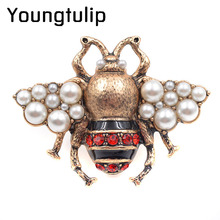 Young tulip Vintage Rhinestone Bee Brooches for Women Fashion Insect Brooch Pin Antique Gold Color High Quality New Year Gift(China)